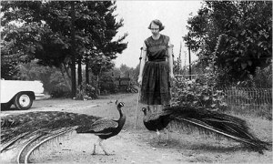 Flannery O'Connor (photo linked from This Recording)