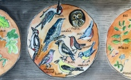 cb5-birds-of-bohemia